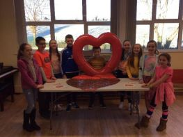 Chest, Heart and Stroke - School Council