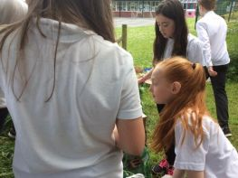 Shared Education Outdoor Workshops on Grounds of Hamiltonsbawn PS